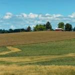 Les fiducies foncières communautaires