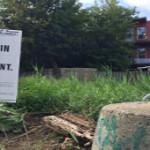 Lande : se réapproprier les terrains vacants